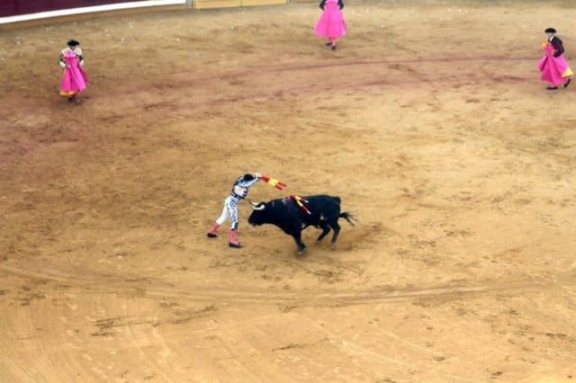 bullfighting in spain