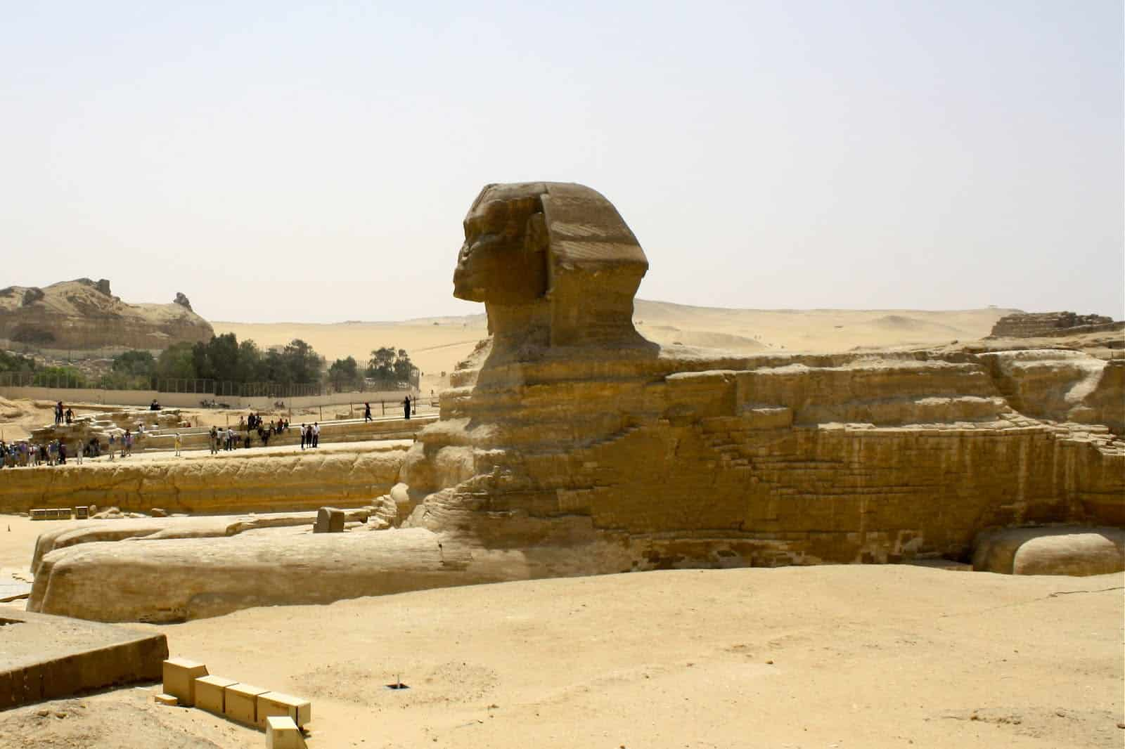 What to feed the sphinx