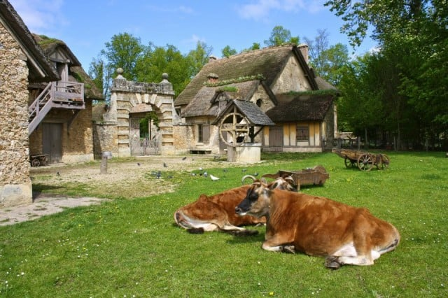 hamlet queen versailles