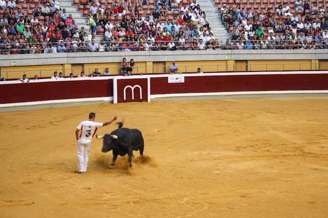 recortadores bullfighting spain