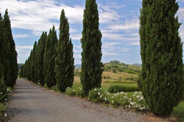 tuscany video