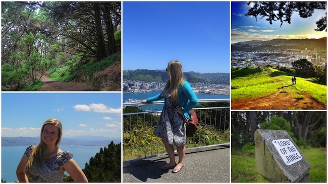 wellington new zealand visit