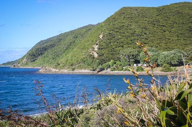 kapiti island visit