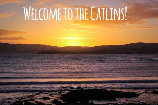 the catlins new zealand