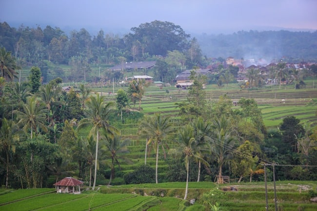 bali green travel