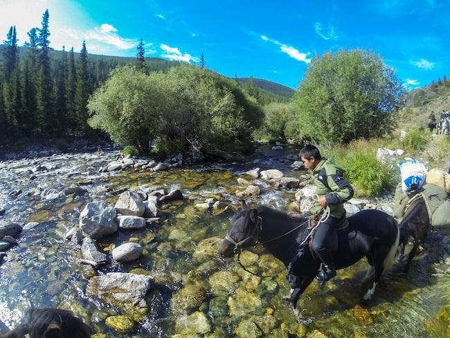 mongolia horse trek