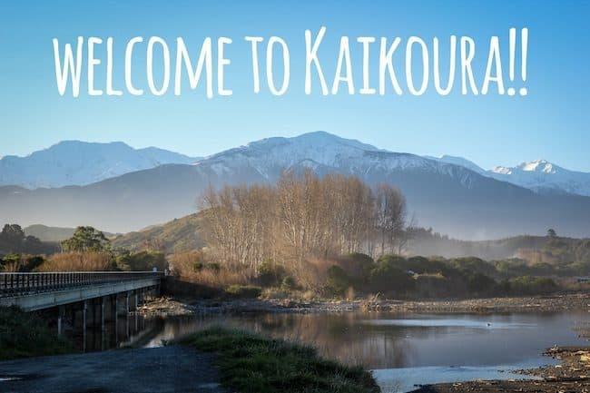 visit kaikoura