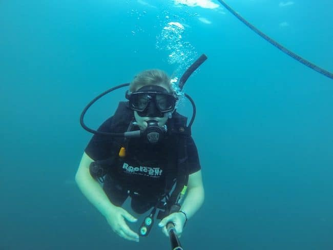 diving koh tao thailand
