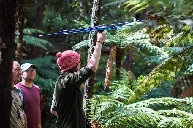 new zealand kakapo