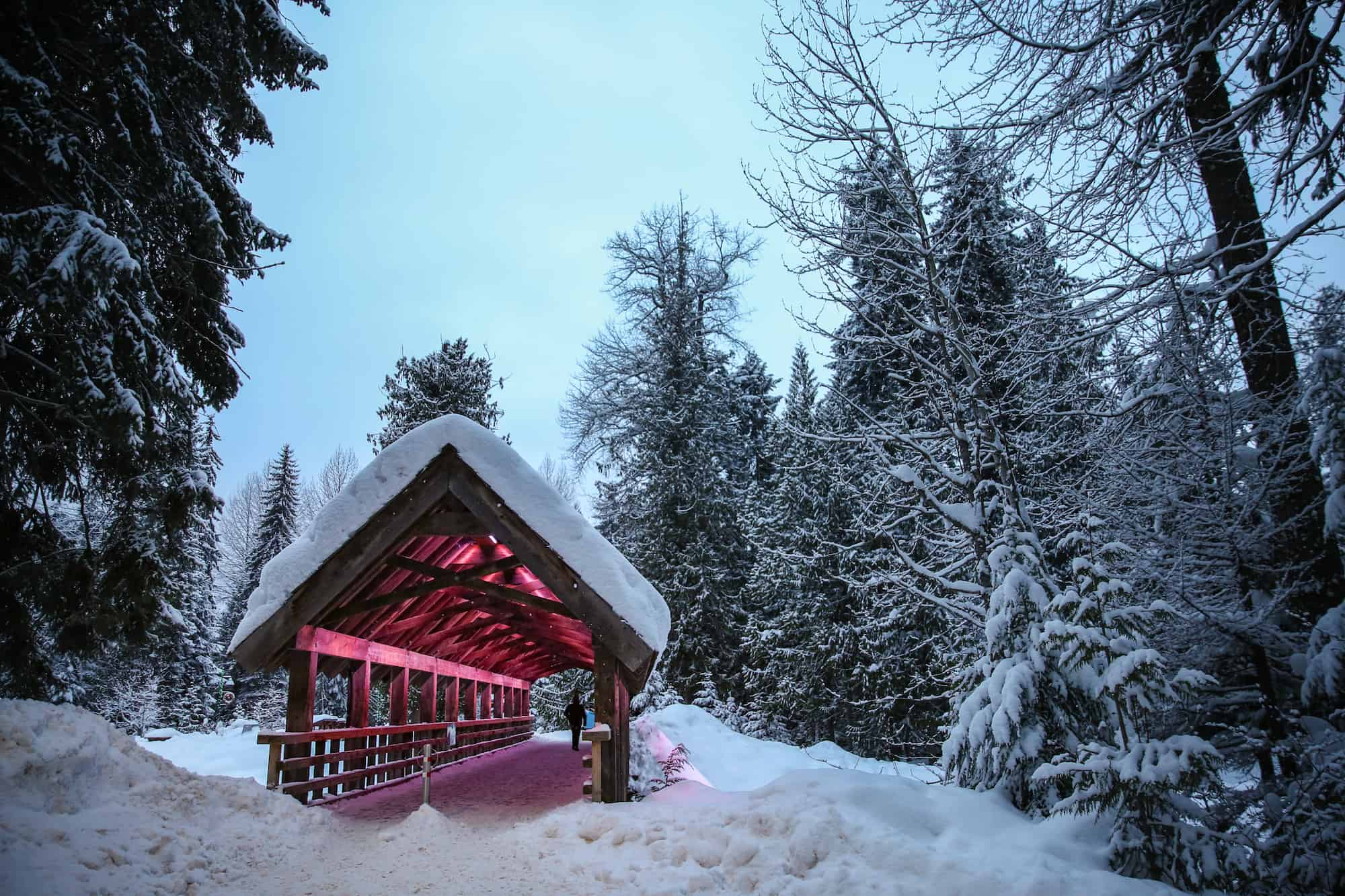 whistler winter travel