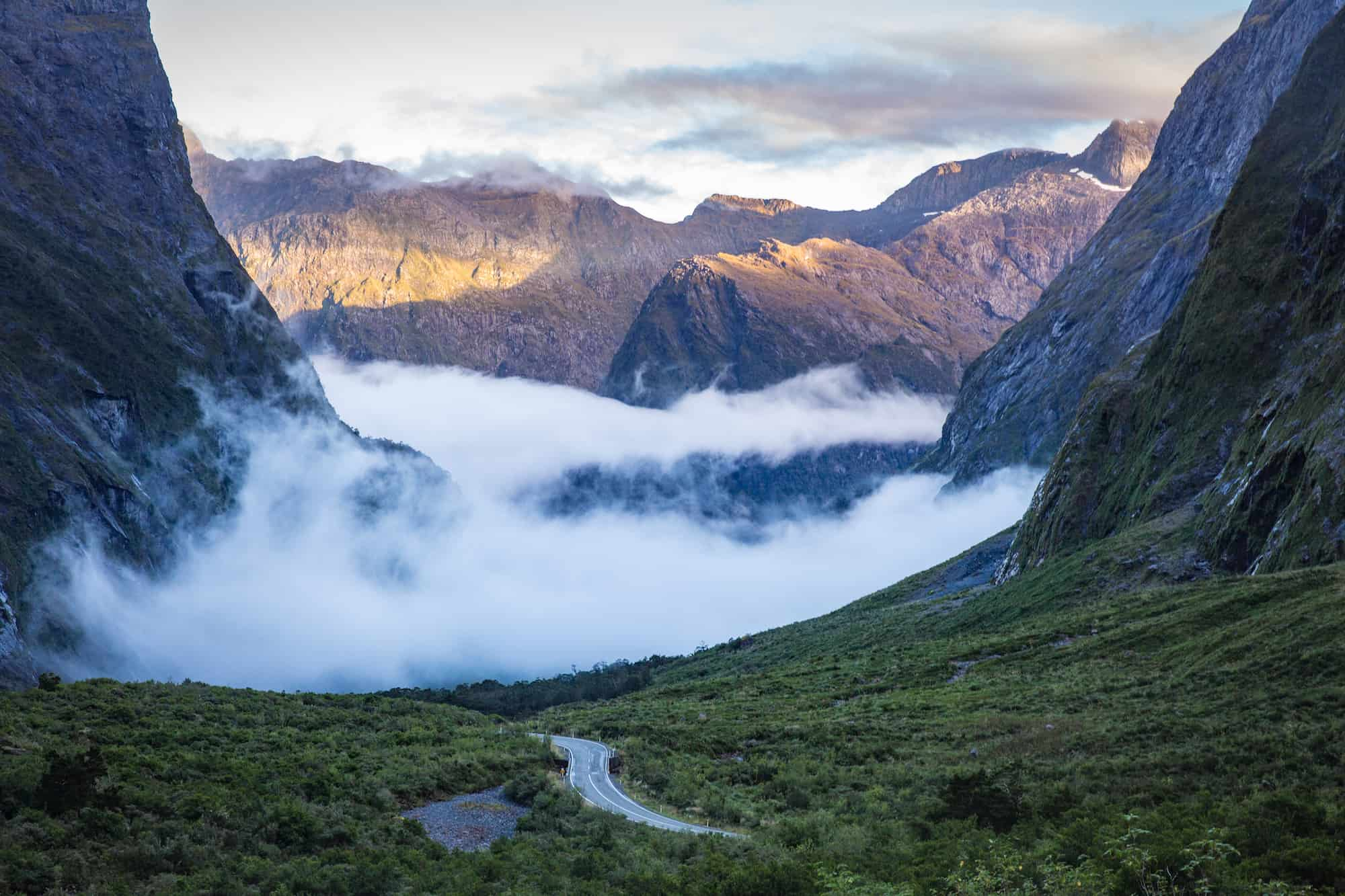 travel Fiordland