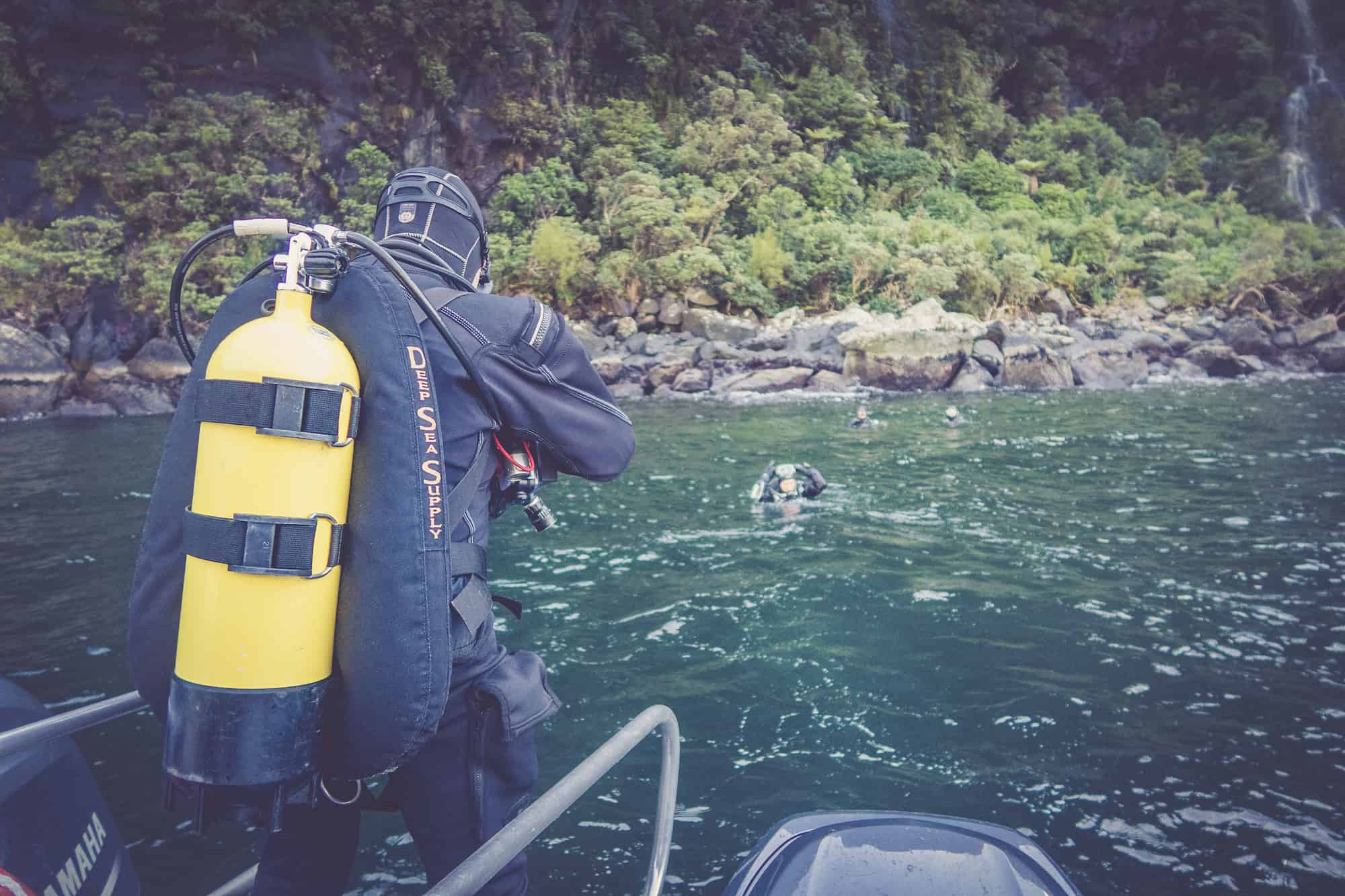 diving milford sound