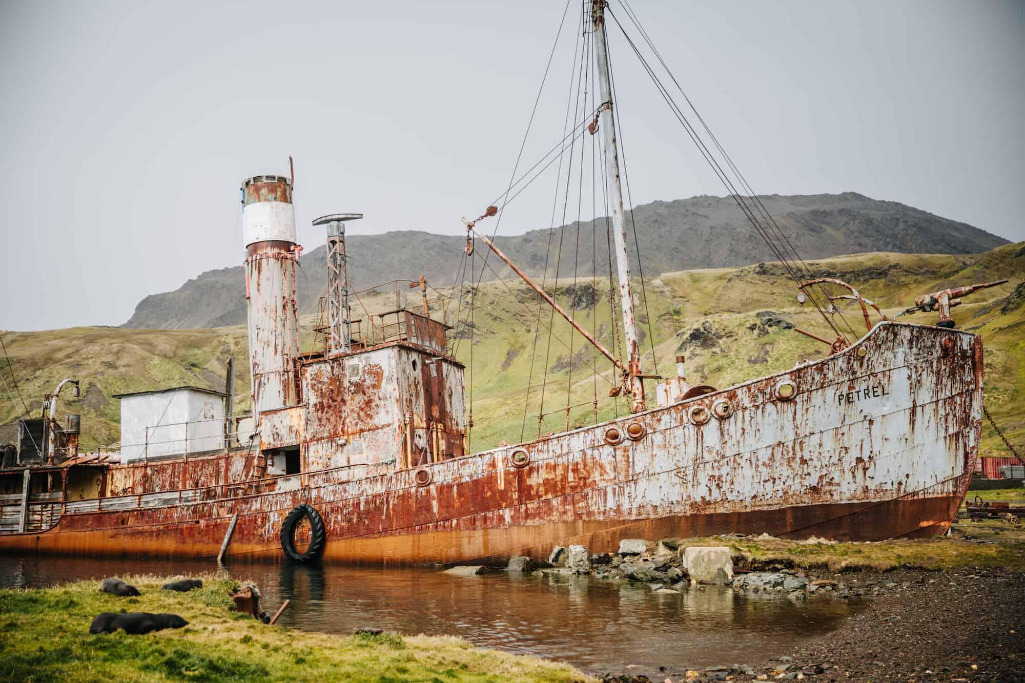 Shackleton South Georgia
