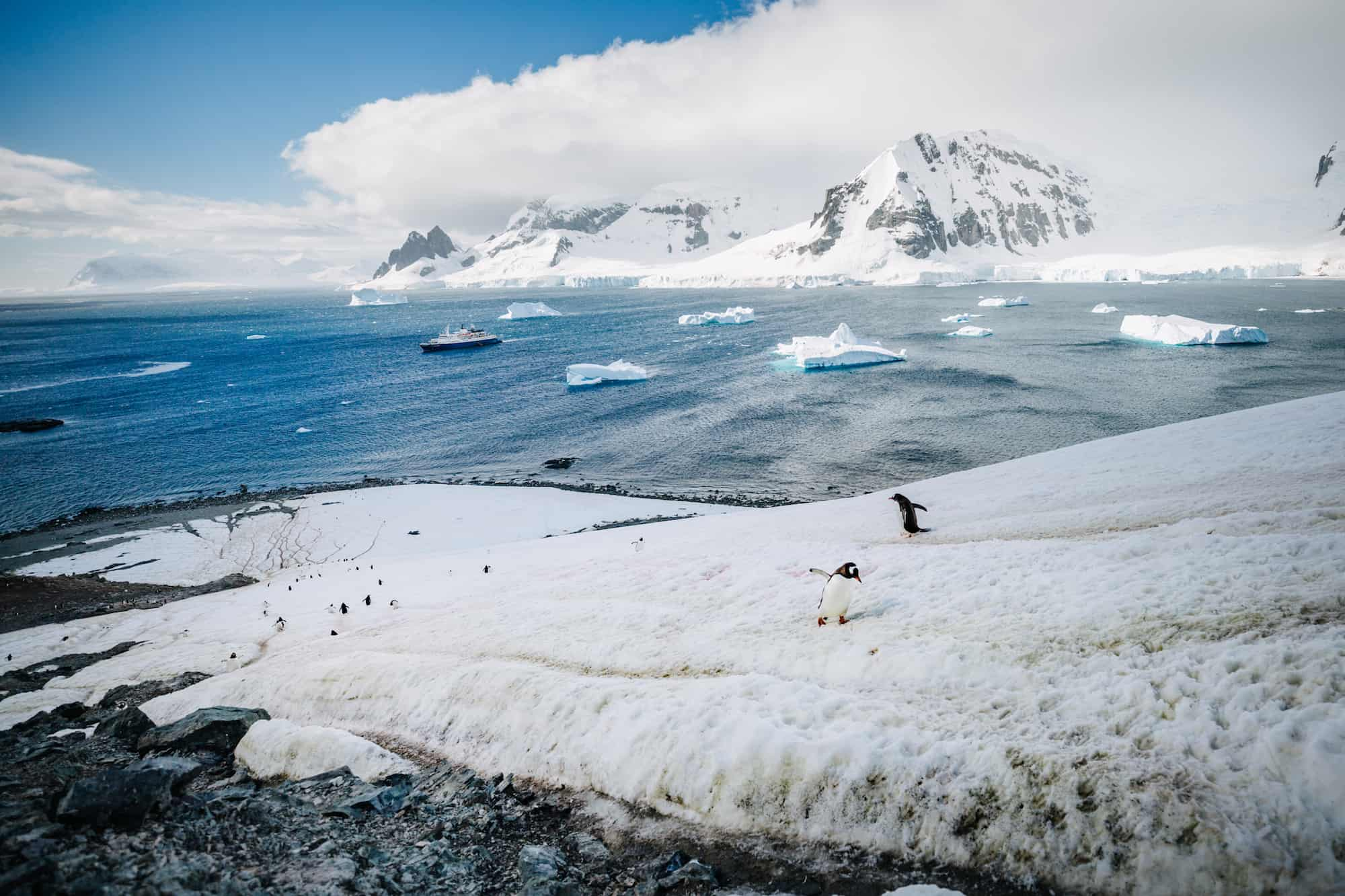 myths about traveling to antarctica