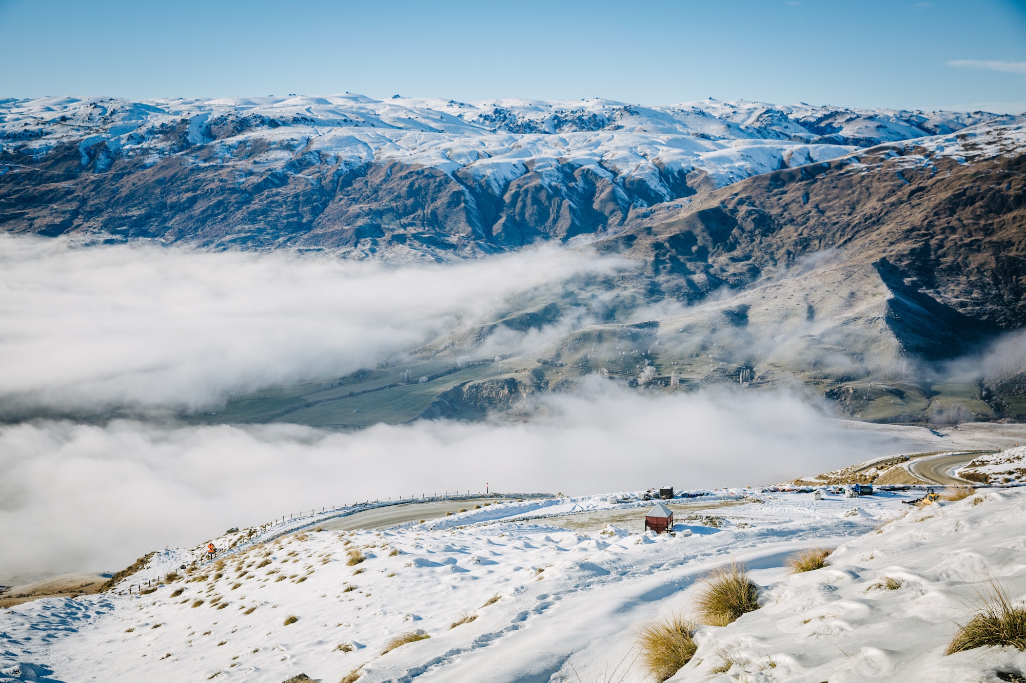 new zealand cold houses