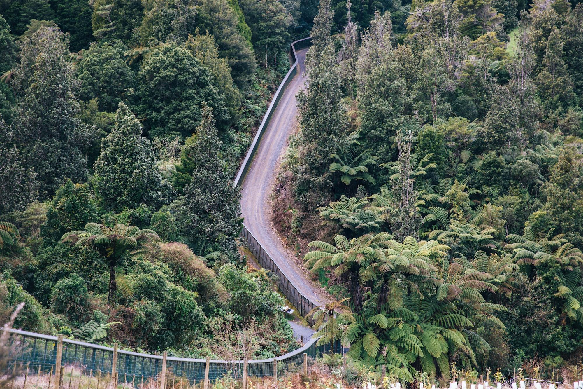 waikato travel