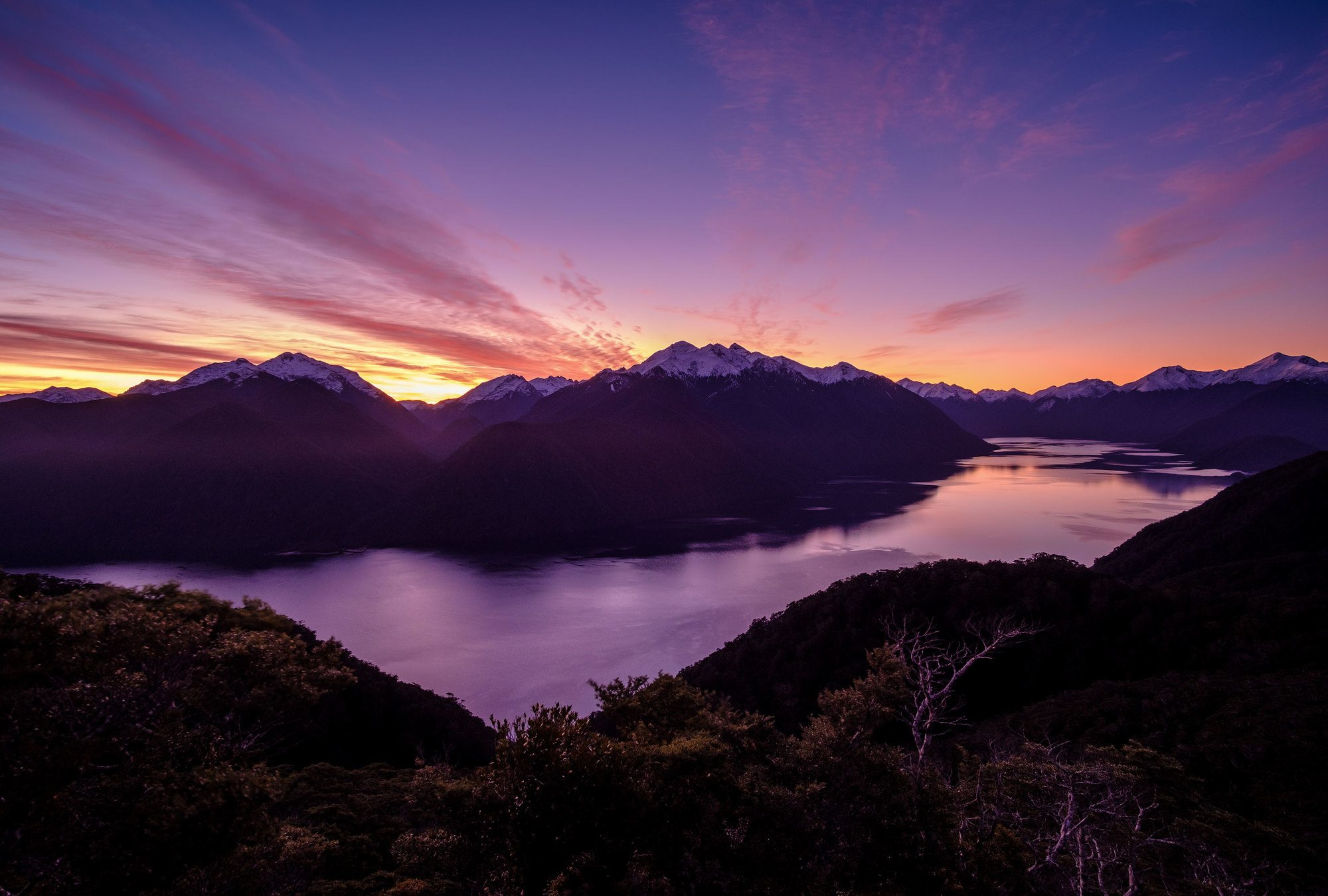 nature experiences fiordland