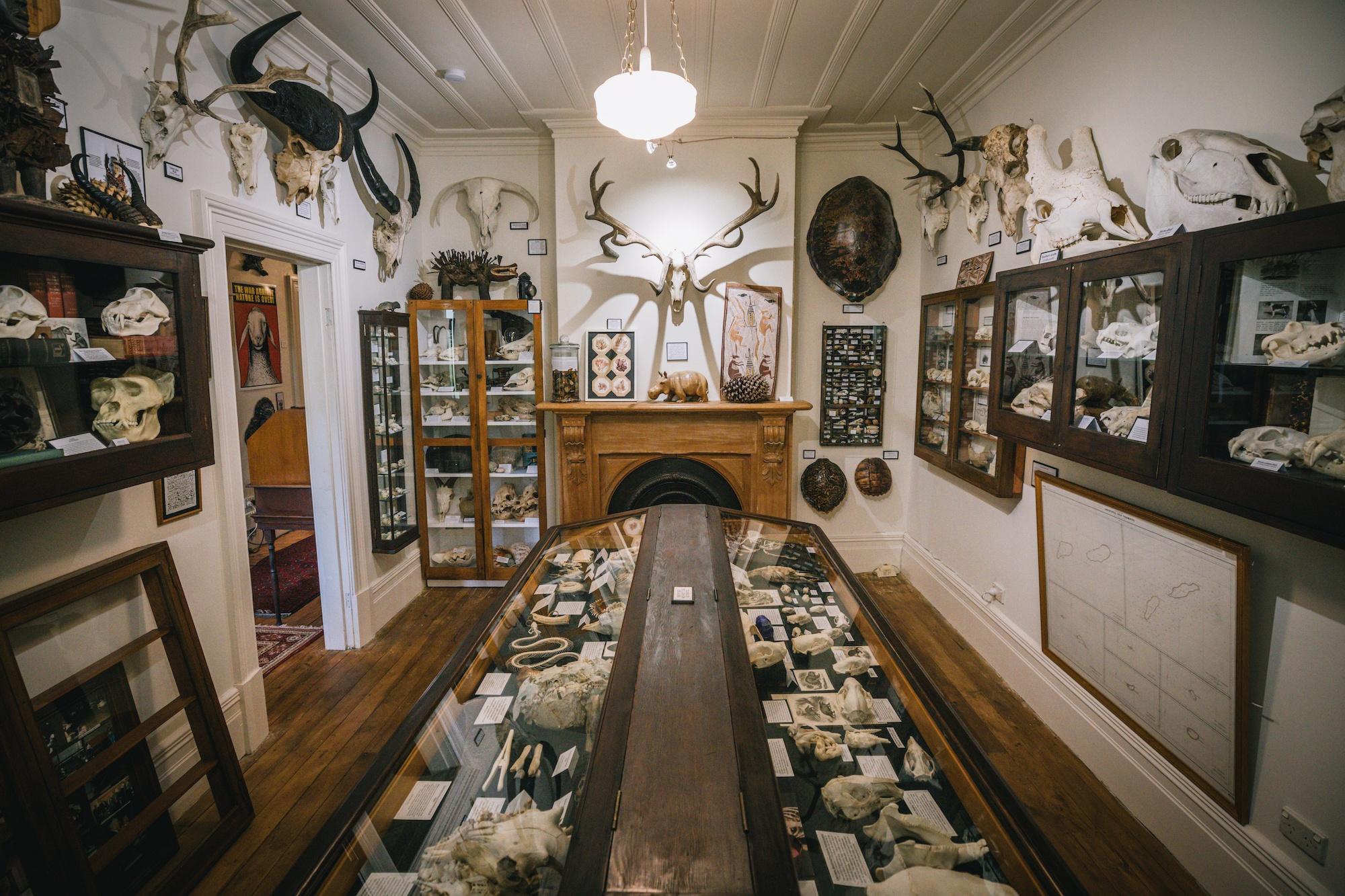 visit Dunedin