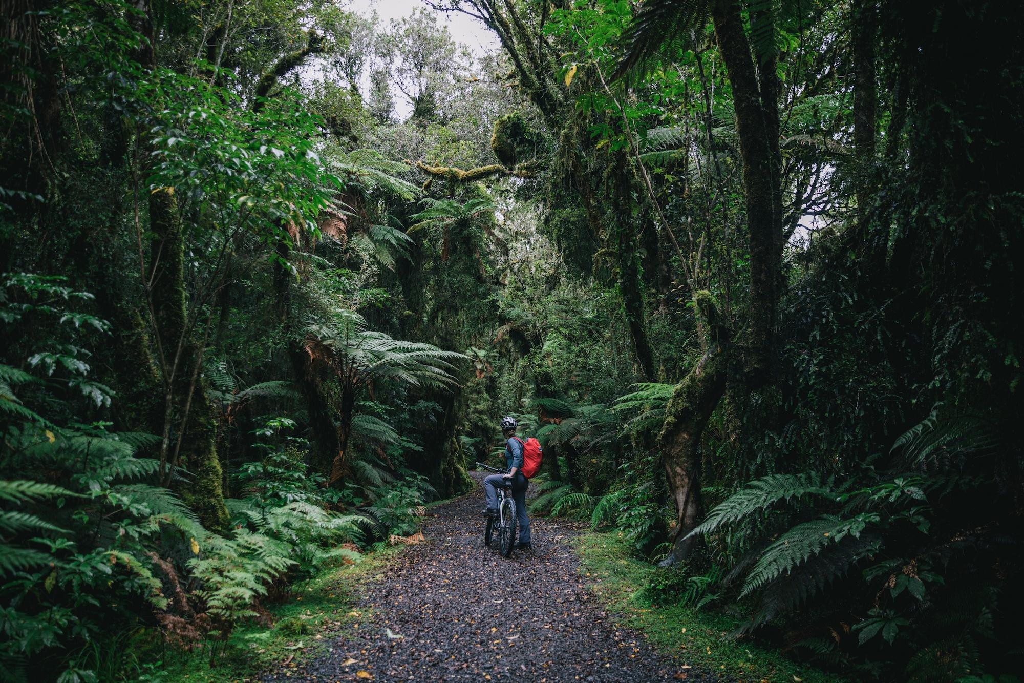 New Zealand's west coast